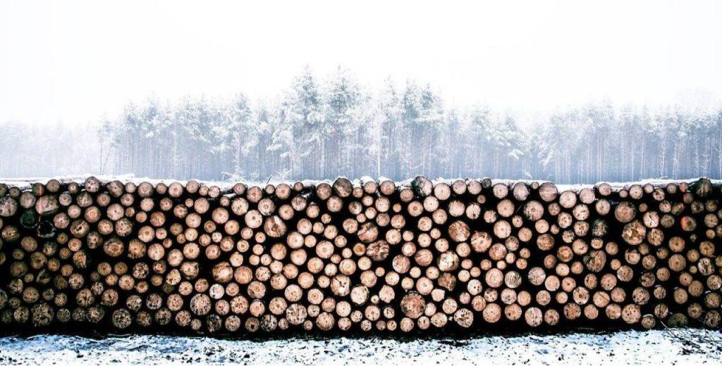 UPM sawmills