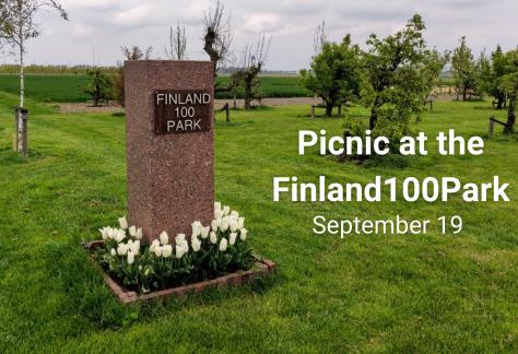 Finland100Park picnic