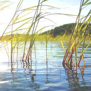 Finland sustainable development